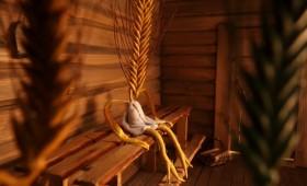 Rehe saun